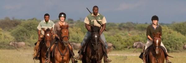 Rideferie-ridesafari-Botswana-Tuli Trail-forside galopp